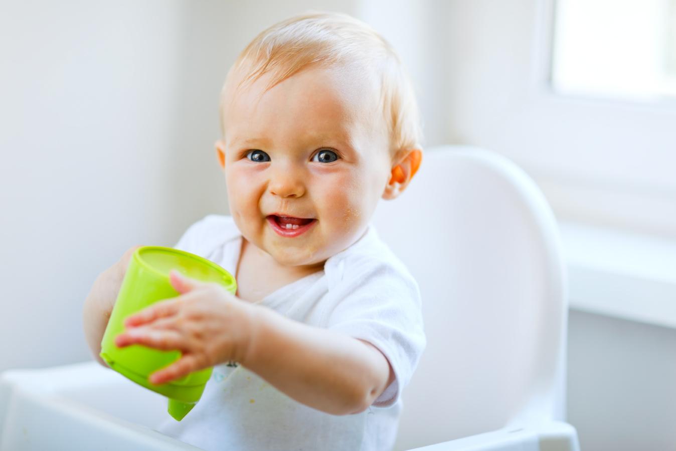 Introdução dos Alimentos na Vida do Bebé: Aos 8 Meses