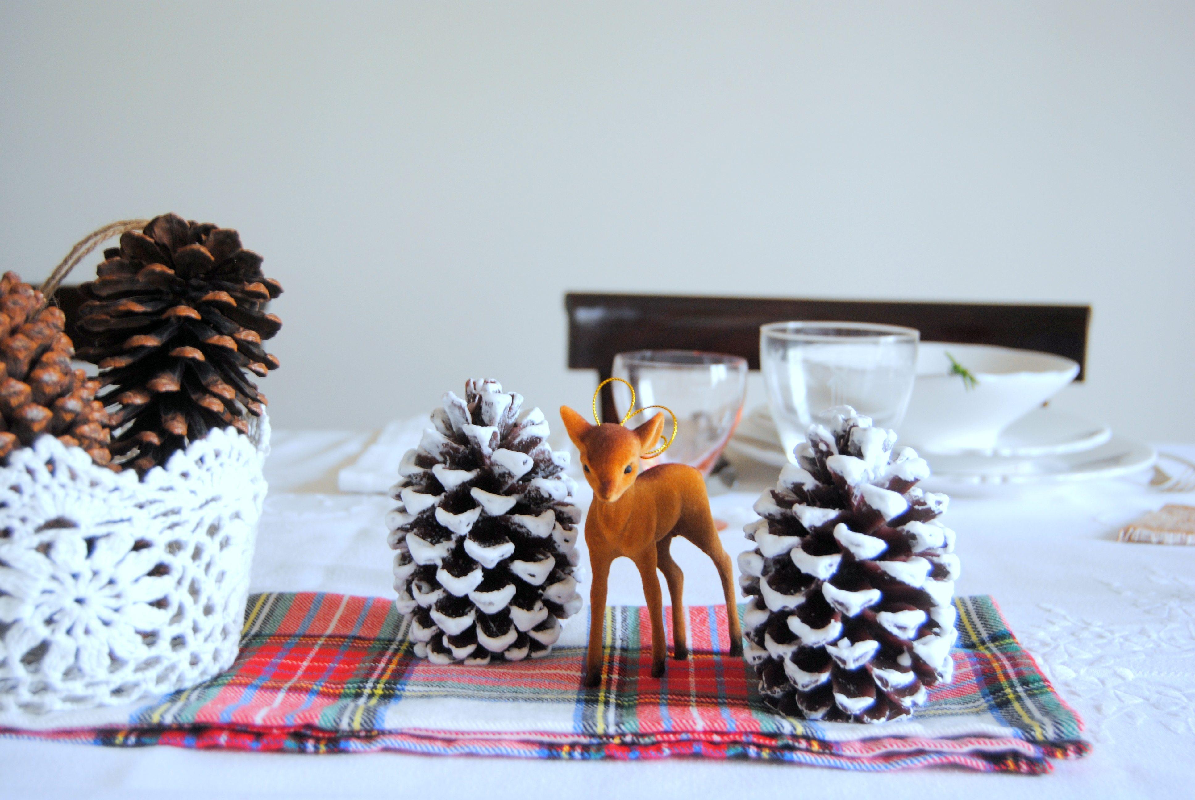 O nosso presente de Natal!